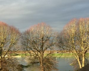Counselling in North Somerset: Views across the Lake Grounds
